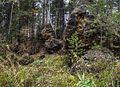 Балакинский рудник. - panoramio (11).jpg