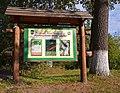 Дідове, Бобровицький район, кв. 91 Новоселицького лісництва.jpg