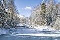 Зимний пруд в дендропарке.jpg