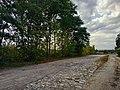 Лехнівка, брукована дорога.jpg