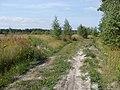 Московская обл 2009, 95 км -Куровское - panoramio.jpg