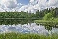 Озеро Быковщинское.jpg