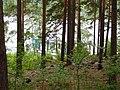 Остров Святой Веры на озере Тургояк.JPG