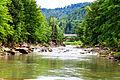 Річка Прут IMG 0744.jpg