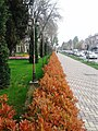 Скверы Душанбе 1.jpg