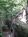 Скельно-печерний комплекс Поляницького регіонального парку (3).jpg