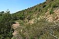 Южный склон Гребенской горы - panoramio.jpg
