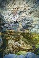 محمية وادي الجمال 3.jpg