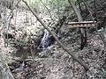 かぐや姫の滝 - panoramio.jpg