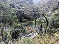 七寨-羊子额-桂山越野穿越20150228 - panoramio (43).jpg