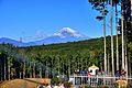 三島スカイウォーク - panoramio (3).jpg