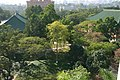 华南农业大学,优美的人文与法学学院环境 - panoramio.jpg