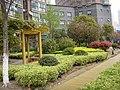 小区一景 - panoramio (4).jpg