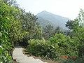 杭州. 登贵人峰-九溪烟树(远景:贵人峰) - panoramio (1).jpg