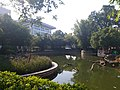 桂林市第十八中学高中部 二〇一九年九月底 27.jpg
