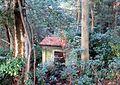 森に隠れたポンプ小屋跡 - panoramio.jpg