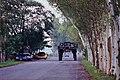 高腳車 Big Wheeler - panoramio.jpg