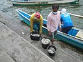 0016Hagonoy Fish Port River Bancas Birds 19.jpg