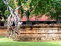 050 Trees on Walls (9183020956).jpg
