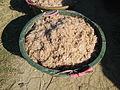 09903jfFields Wawa Shrimps Halls Beaches Orion Bataanfvf 02.JPG