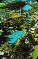 1964 Dorney Park Aerial Photo.jpg