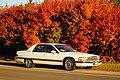 1992 Buick Roadmaster (21913958568).jpg