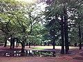 1 Chome-3 Nomizu, Chōfu-shi, Tōkyō-to 182-0031, Japan - panoramio (5).jpg