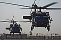 1st Air Cavalry Brigade conducts first air assault DVIDS177497.jpg