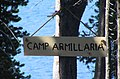 2005. The camp at Four Mile Lake on the Winema National Forest is always designated Camp Armillaria (Greg Filip made the sign) for those who re-measure long-term Armillaria ostoyae root disease plots. (25748541138).jpg