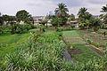 2010-09-12 13-42-51 Tanzania Mwanza Mwanza.jpg