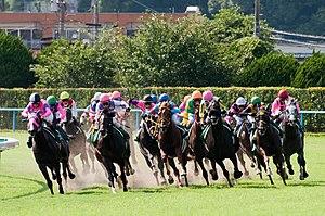 「競馬」の画像検索結果