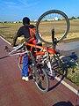 2011 09 06 Transport de bicicleta en bicicleta a la Via Xurra.jpg