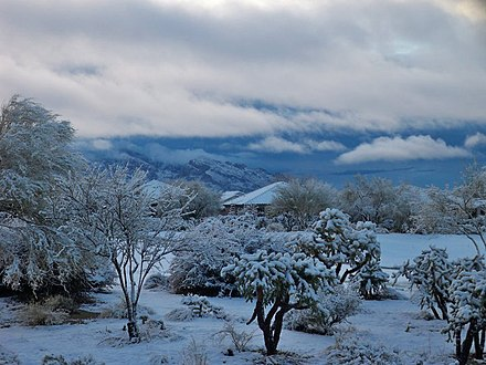 Oro Valley snowfall in 2011. The Santa Catalina Mountains are in the background. 2011 snow in tucson and oro valley.jpg