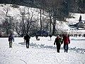 2012 'Seegfrörni' - Türlersee - Hausen am Albis 2012-02-18 13-02-27 (SX230).JPG