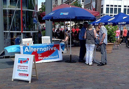 2013-07 Alternative für Deutschland Bocholt