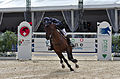 2013 Longines Global Champions - Lausanne - 14-09-2013 - Vincent Bartin et Macao 14.jpg