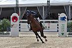 2013 Longines Global Champions - Lausanne - 14-09-2013 - Vincent Bartin et Macao 14.jpg