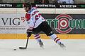 20150207 1830 Ice Hockey AUT SVK 9878.jpg