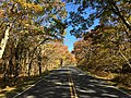 2016-10-25 11 02 17 View north along Shenandoah National Park's Skyline Drive just north of the Crescent Rock Overlook in Page County, Virginia.jpg