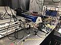 20190311 Sussex Peter Lab2.jpg