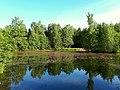 2171. Озеро Собачье в парке Сосновка.jpg