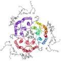 2brd bacteriorhodopsin biolU rib top.tiff