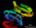 2k49 NMR ensemble ribbons.jpg