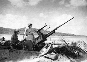 37 mm Gun M1 - 37mm antiaircraft gun in the Solomon Islands.