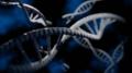3D DNA (High contrast).png