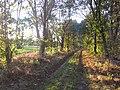 49847 Wielen, Germany - panoramio - Roland Meijerink.jpg
