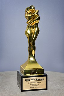 AVN Award American pornographic film award