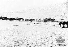 Rows of horses and men stand distant from the camera in a desert.