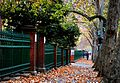 Adelaide. Autumn walk. (20016607286).jpg