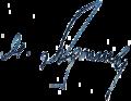 AdyshevMM-signature.png